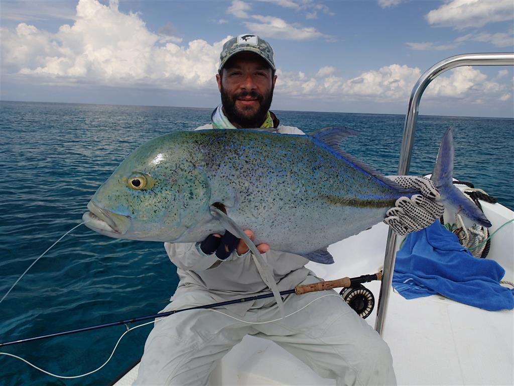 Fly fishing cosmoledo seychelles fly odyssey blog for Seychelles fly fishing