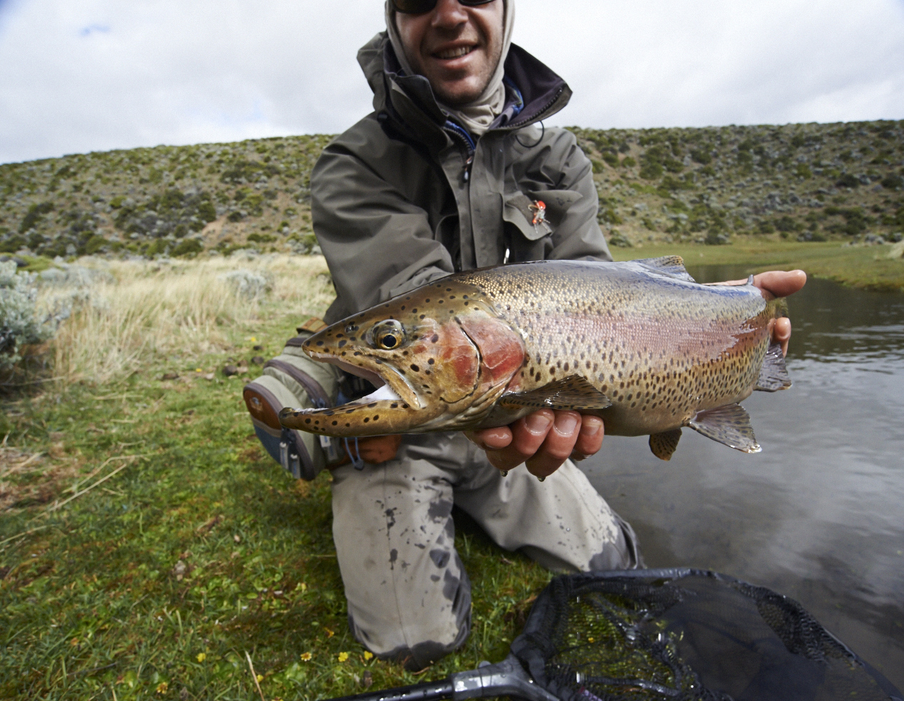 Fly fishing for rainbow trout kooi noom argentina fly for Fishing in argentina