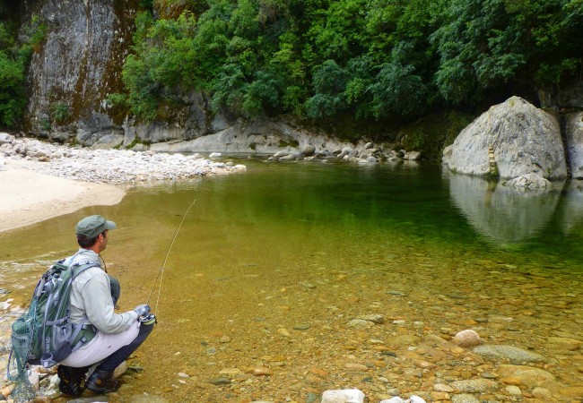 Fly fishing in new zealand fly odyssey blog for New zealand fly fishing