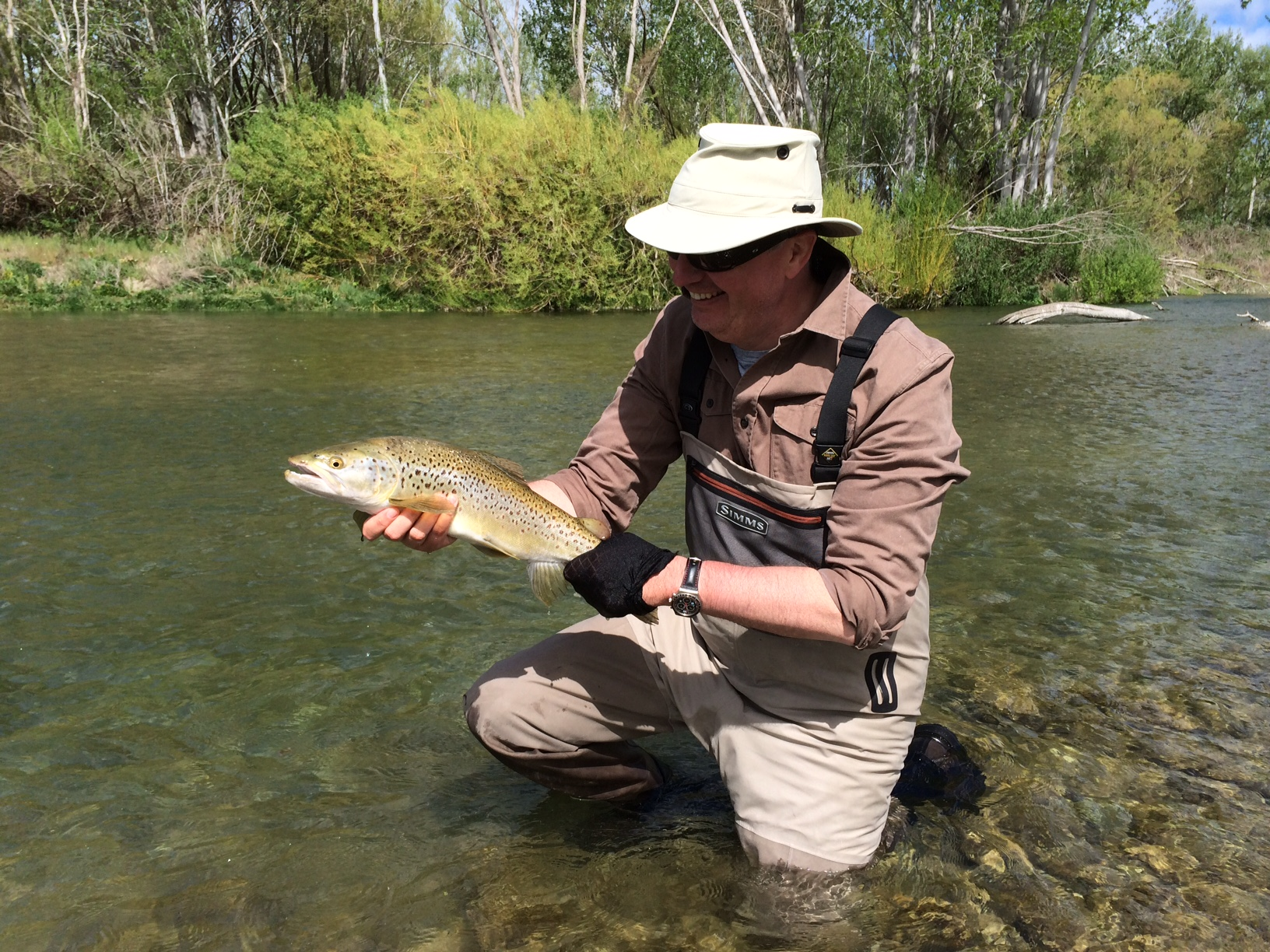 Fly fishing in new zealand fly odyssey blog for Fly fishing blogs