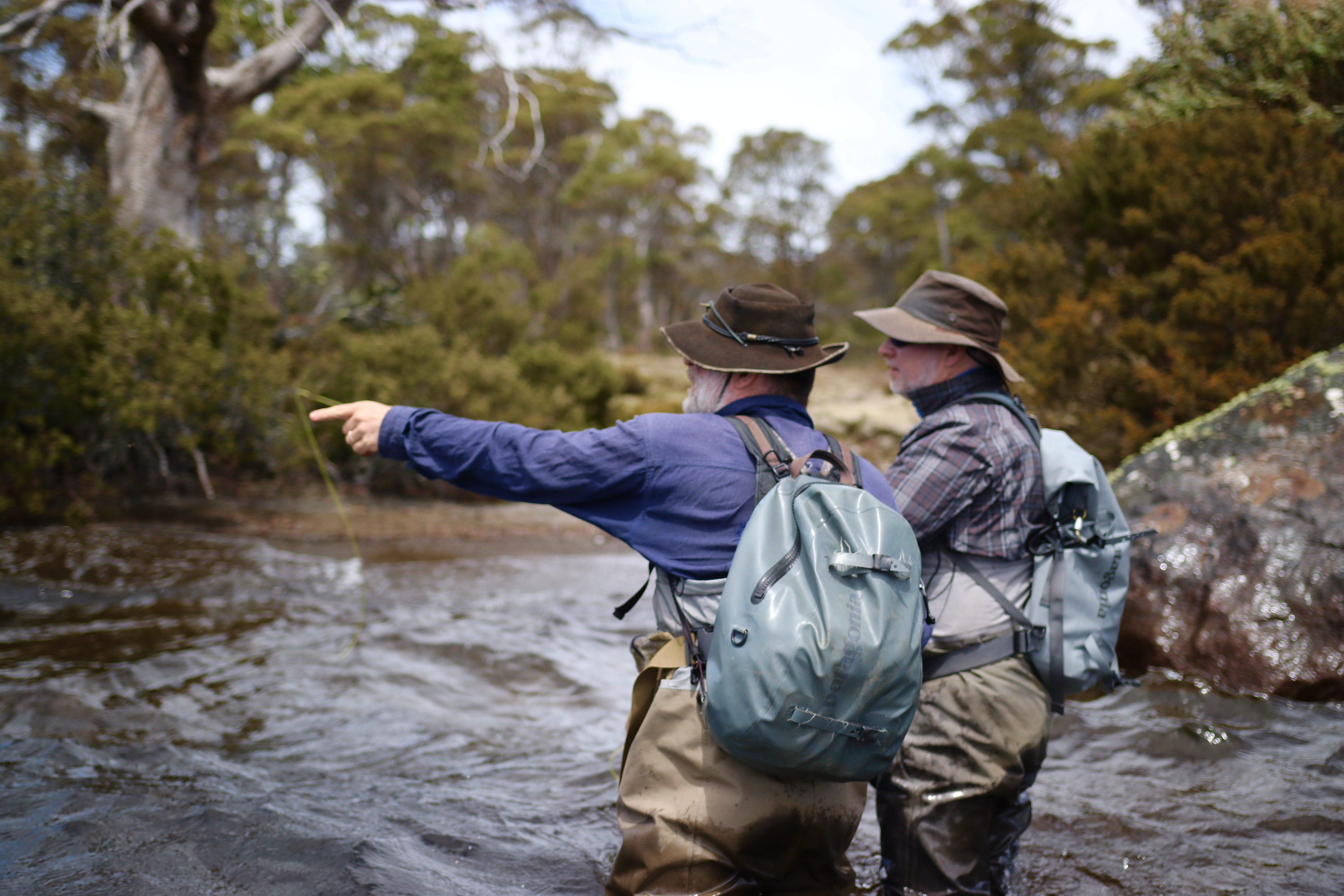 Fly fishing tasmania wilderness huts trip report fly for Fly fishing blogs