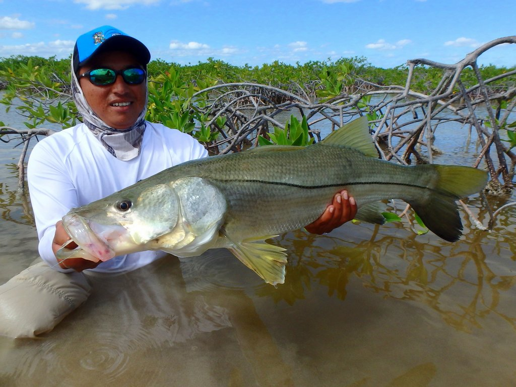 Fly fishing in mexico fly odyssey blog for Fish in mexico