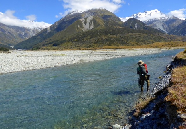 New Zealand 2017 Hosted Trip Report by Paul Procter