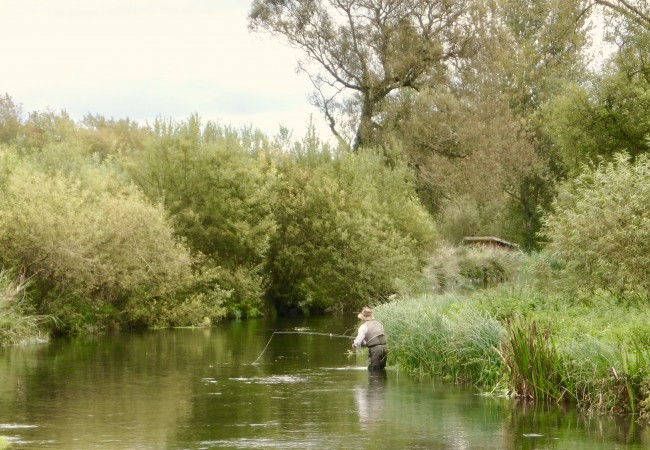 2018 Chalkstream fishing