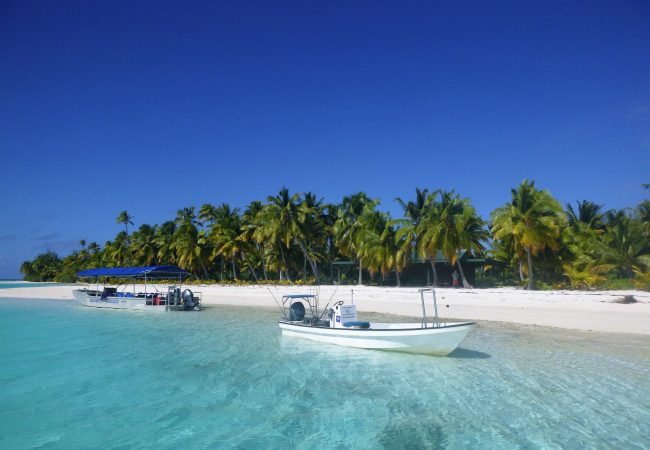 Flyfishing Aitutaki, Cook Islands Client report