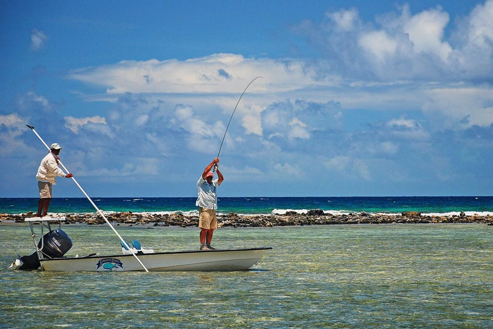 Belize turneffe flats saltwater fly fishing with fly odyssey for Salt water fly fishing