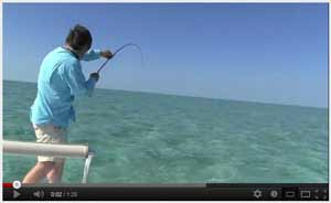 Watch video of Fly Fishing in Cuba, 2012