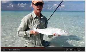 Watch video of Fly Fishing in the Madives, 2012