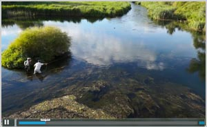 Watch video of Fly Fishing in Spain, 2013